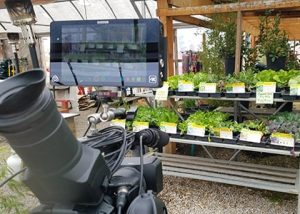image of filming at Jericho Nursery